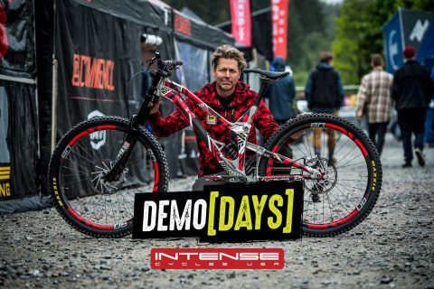 Demo Days Intense